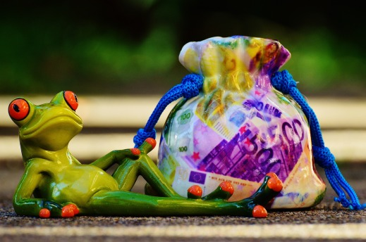 Imagen de una rana con una bolsa de dinero